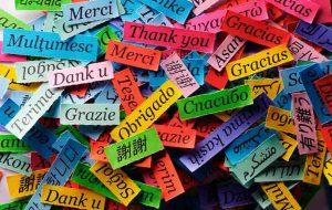 5 Reasons Why Everyone Should Learn another Language